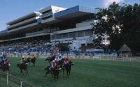 Turffontein Race Course 1