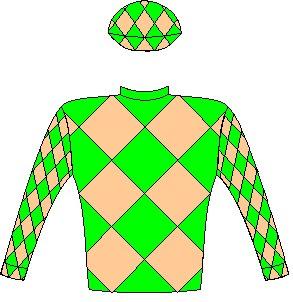 Horizon - Jockey Silks - Dark green and khaki checked diamonds - Owner - Hunkydory Investments 15 (Pty) Ltd