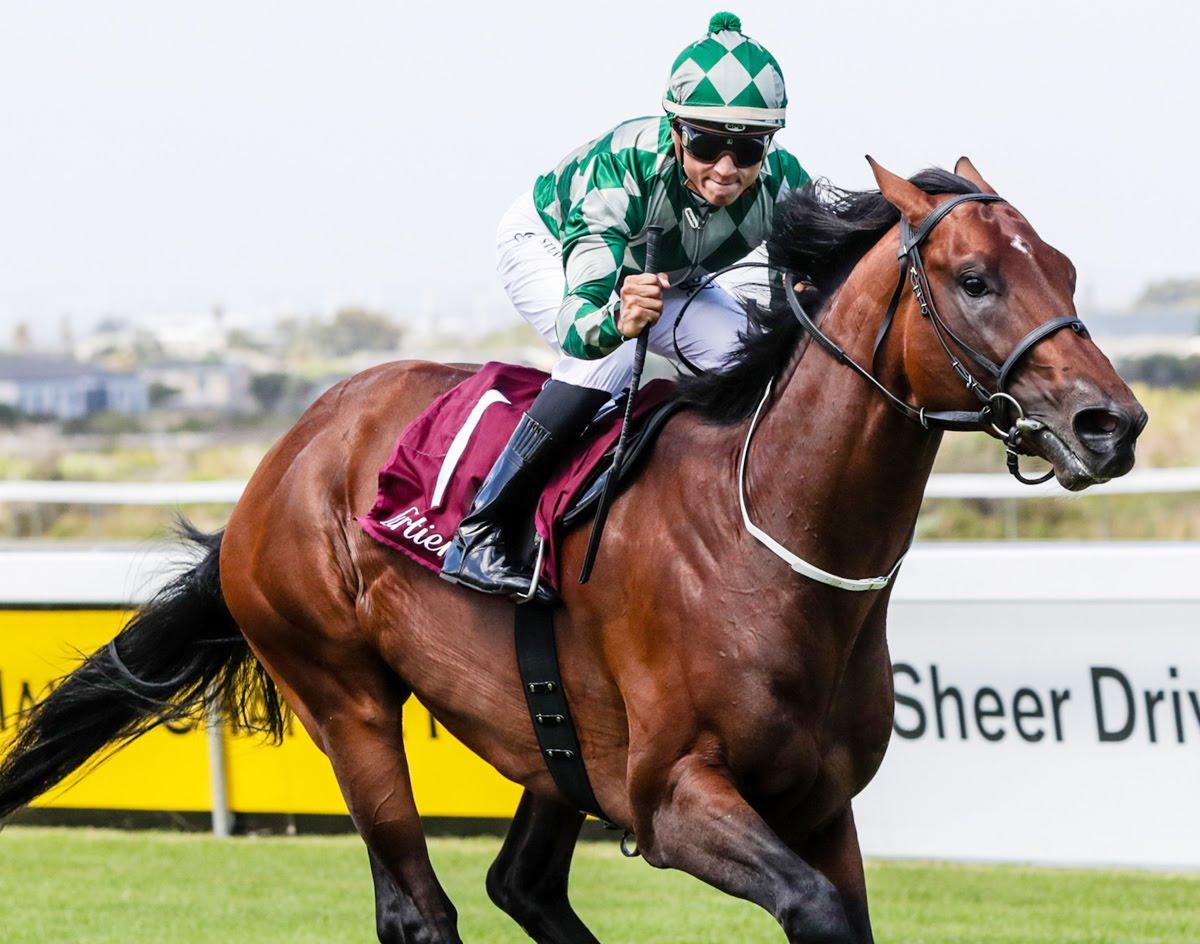 Horizon Horse Durban July