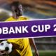 20180118 HWBLOG POSTIMG Nedbank Cup 2018