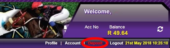 Zapper Hollywoodbets Website Step 1