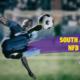20180725 HWBLOG POSTIMG South African NFD 2