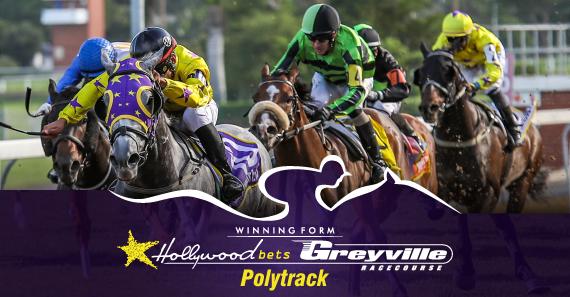 20.07.29 HWBLOG POSTIMG Local Racing 4 4