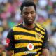 Sthembiso Ncgobo