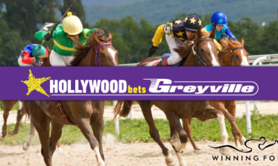 Hollywoodbets Greyville