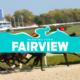Fairview Tips